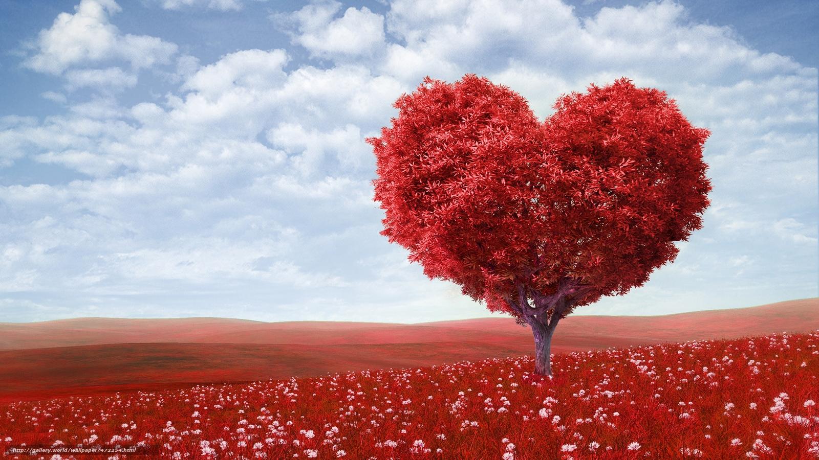 pobra tapety Walentynki,  Mio,  romans,  serce Darmowe tapety na pulpit rozdzielczoci 5000x2812 — zdjcie №472254