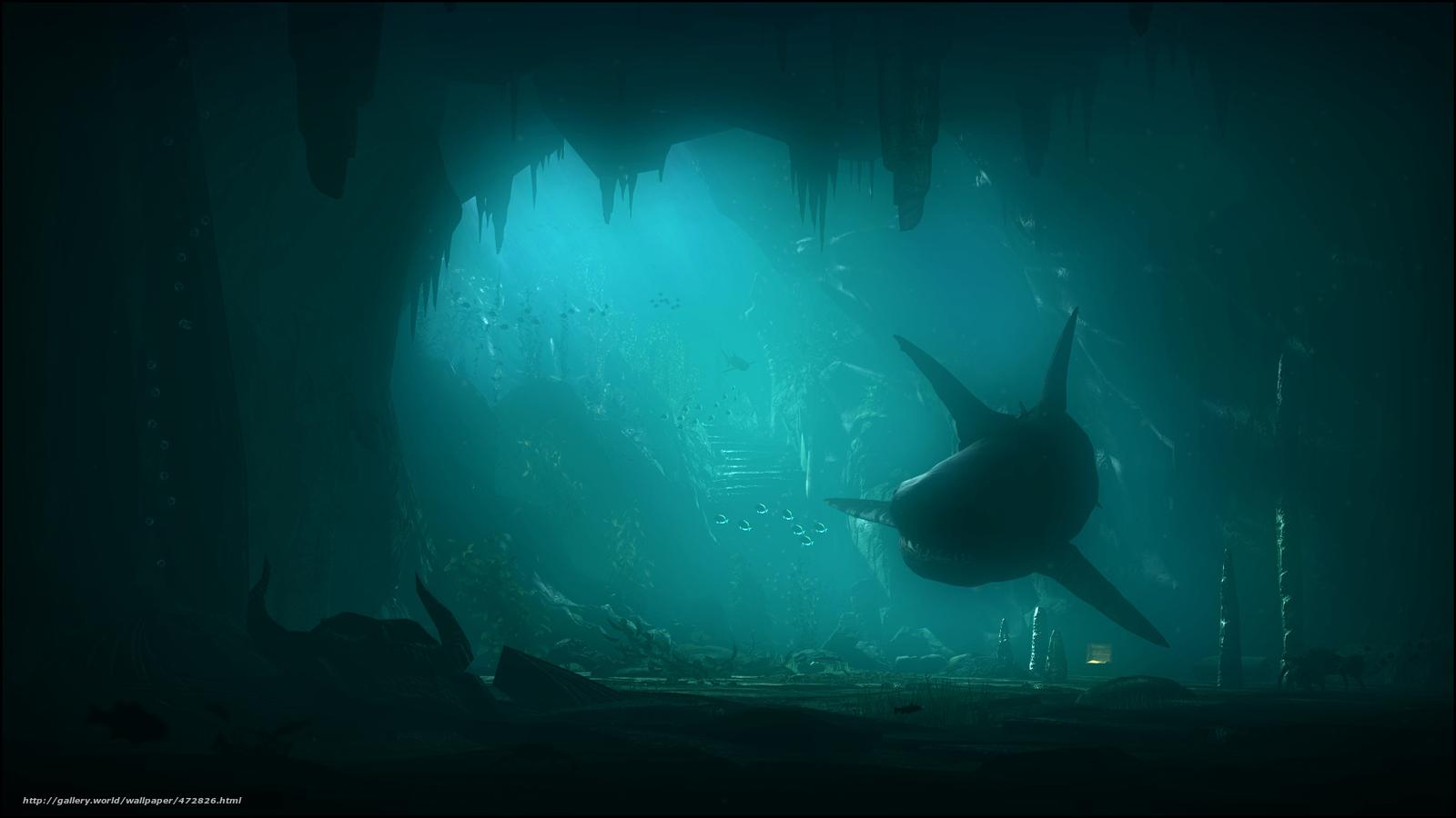 Descargar Gratis Arte Tiburn El Mundo Submarino Mar
