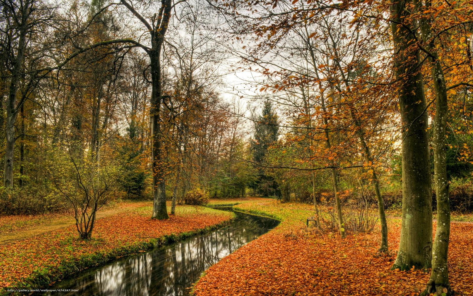 Tlcharger Fond D Ecran Parc Automne Nature Paysage Fonds