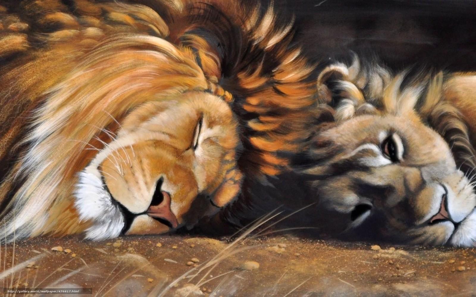 scaricare gli sfondi immagine,  Arte,  leone,  leonessa Sfondi gratis per la risoluzione del desktop 1680x1050 — immagine №476817