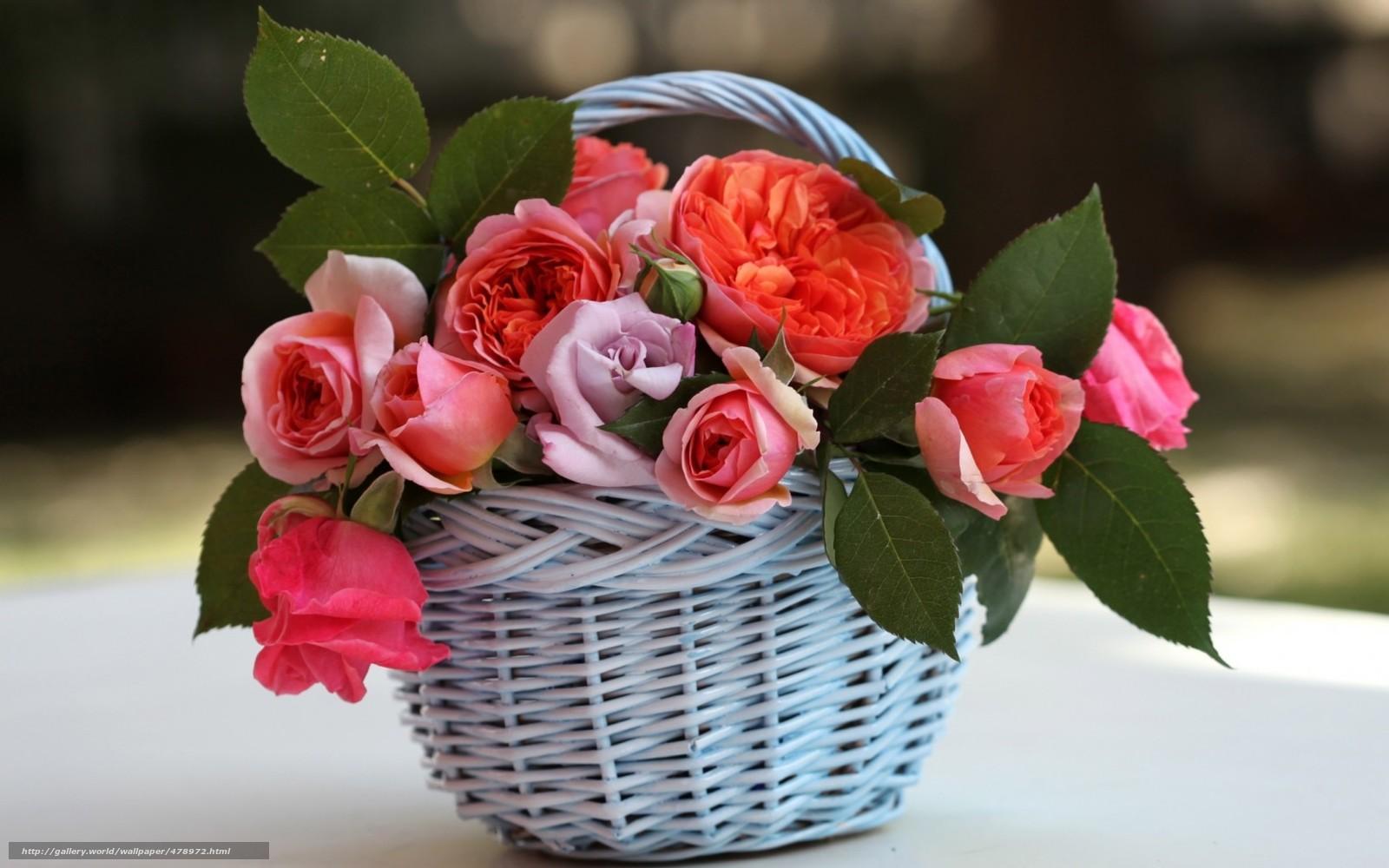 tlcharger fond d 39 ecran panier roses feuillage fleurs fonds d 39 ecran gratuits pour votre. Black Bedroom Furniture Sets. Home Design Ideas