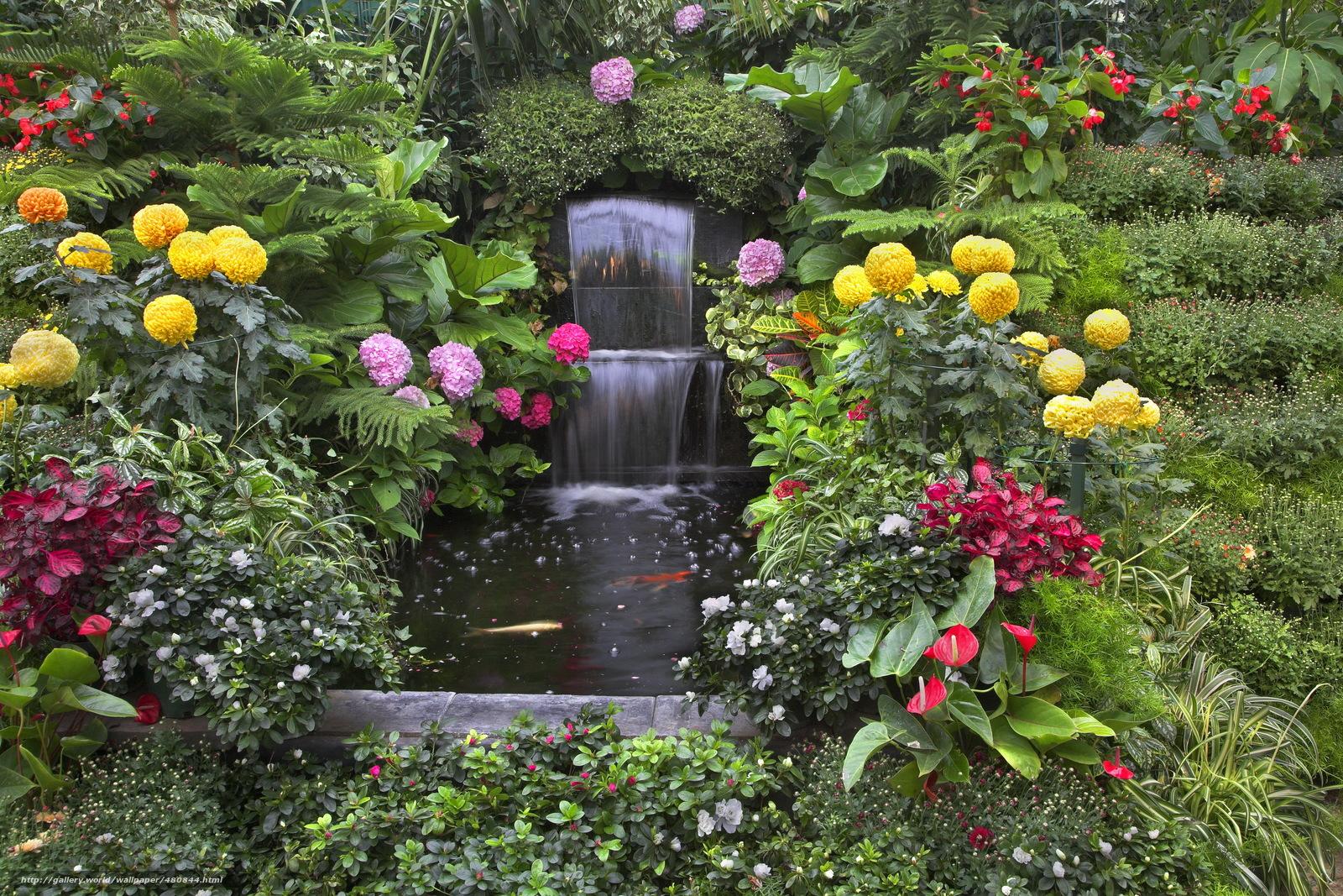 Image gallery naturaleza con flores fotos - Plantas de jardin fotos ...