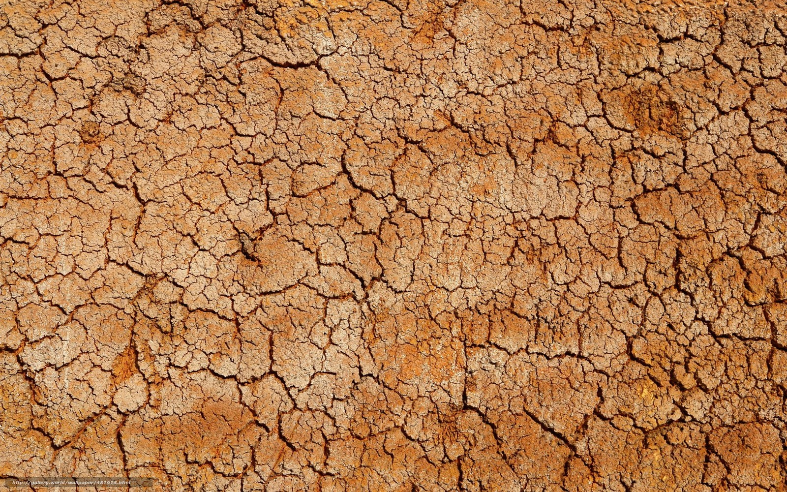 Download wallpaper desert,  texture,  Crack,  CORK free desktop wallpaper in the resolution 1680x1050 — picture №481915