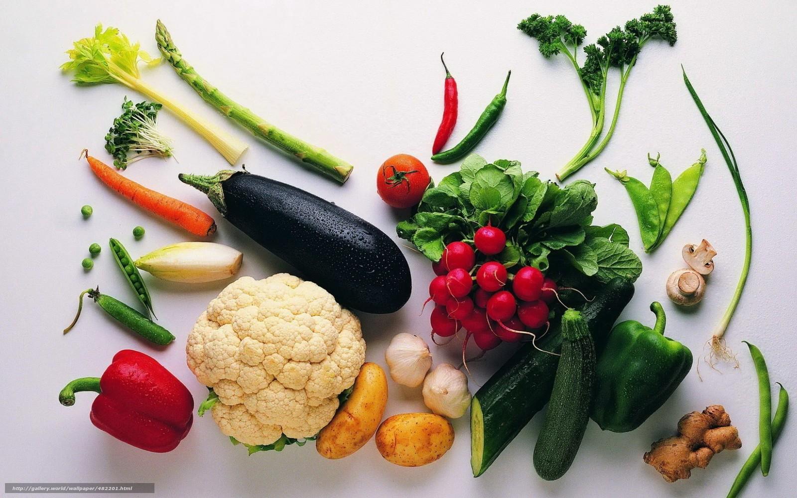 Download wallpaper vegetables,  food,  radish,  cucumber free desktop wallpaper in the resolution 1680x1050 — picture №482201
