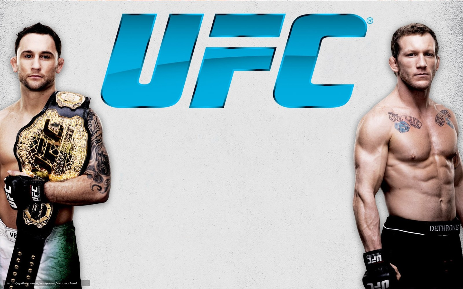 Download wallpaper Mixed Martial Arts,  fighters,  champion free desktop wallpaper in the resolution 1680x1050 — picture №482202