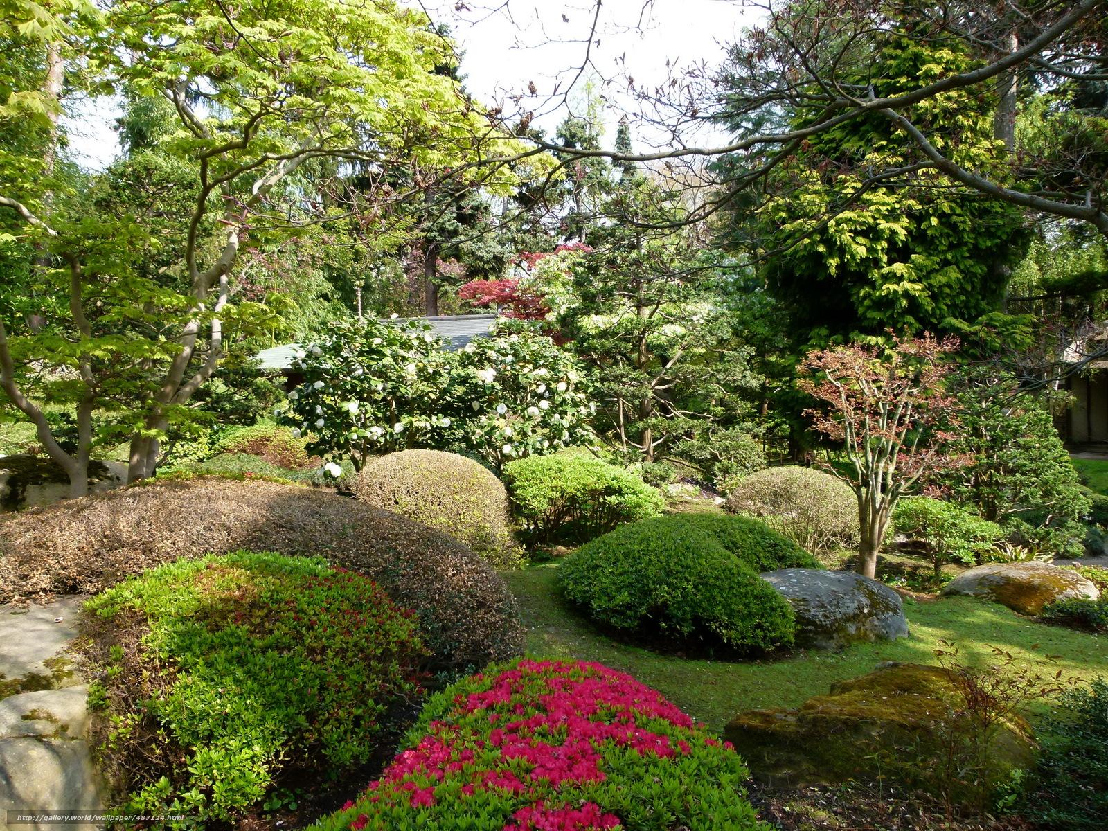 Скачать обои Сады,  Франция,  japanese,  albert kahn бесплатно для рабочего стола в разрешении 3264x2448 — картинка №487124