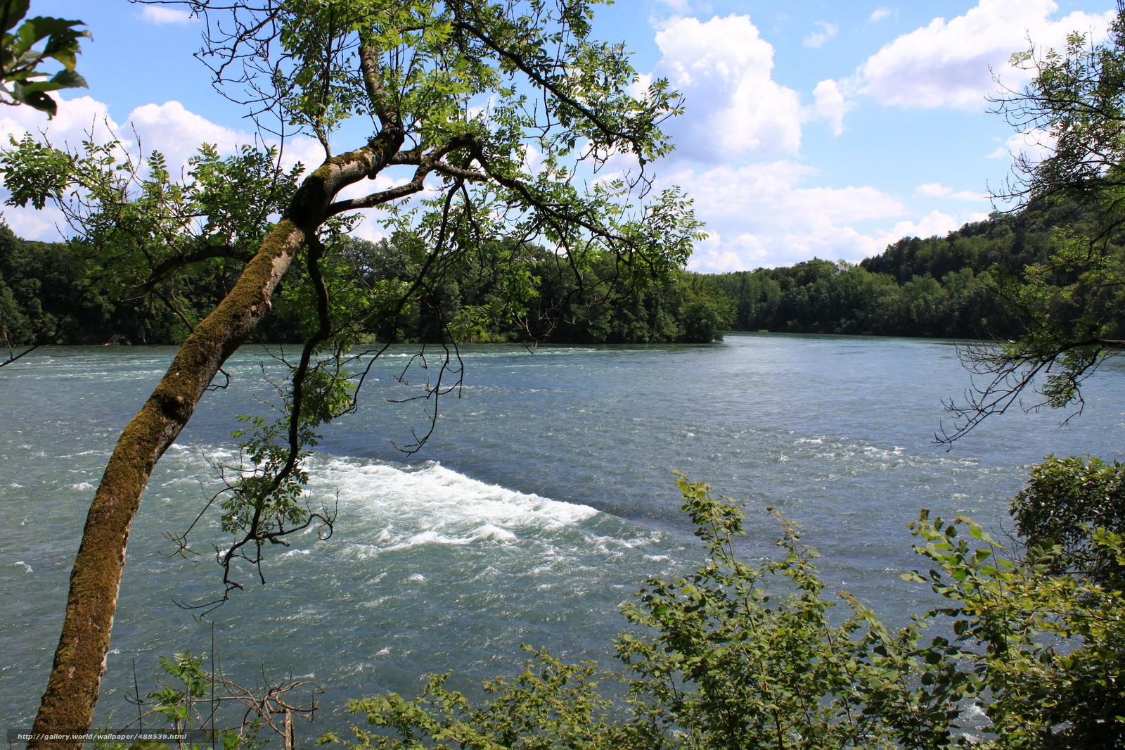 Download wallpaper River,  switzerland,  rietheim rhine,  Trees free desktop wallpaper in the resolution 2972x1981 — picture №488539