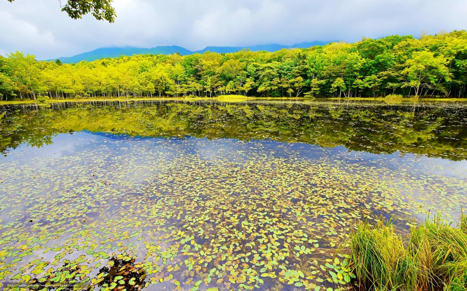 Shiretoko Japan  city photos : Download Hintergrund Shiretoko National Park, Japan, Japan, Teich ...