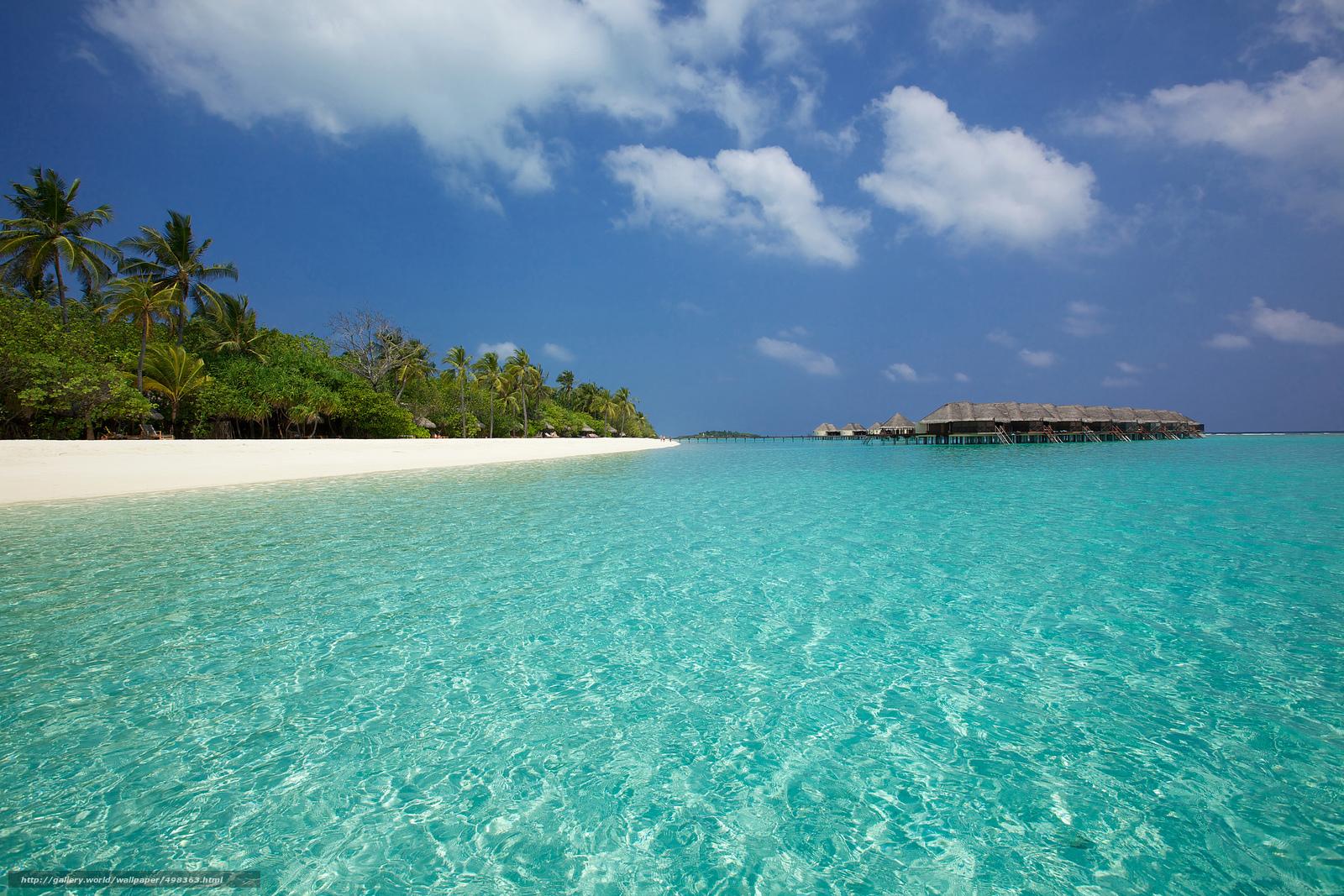 Download Hintergrund Malediven, Tropen, Strand Freie