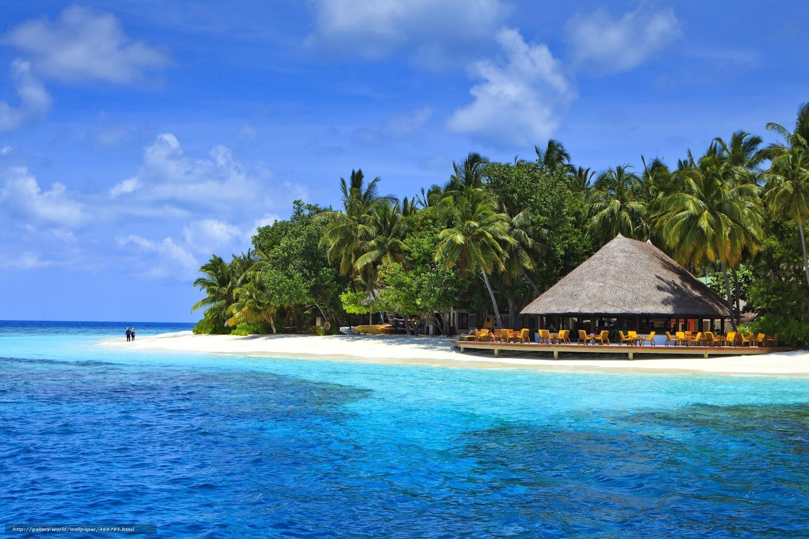 Скачать обои Мальдивы,  тропики,  пляж,  пальмы бесплатно для рабочего стола в разрешении 1600x1067 — картинка №499791