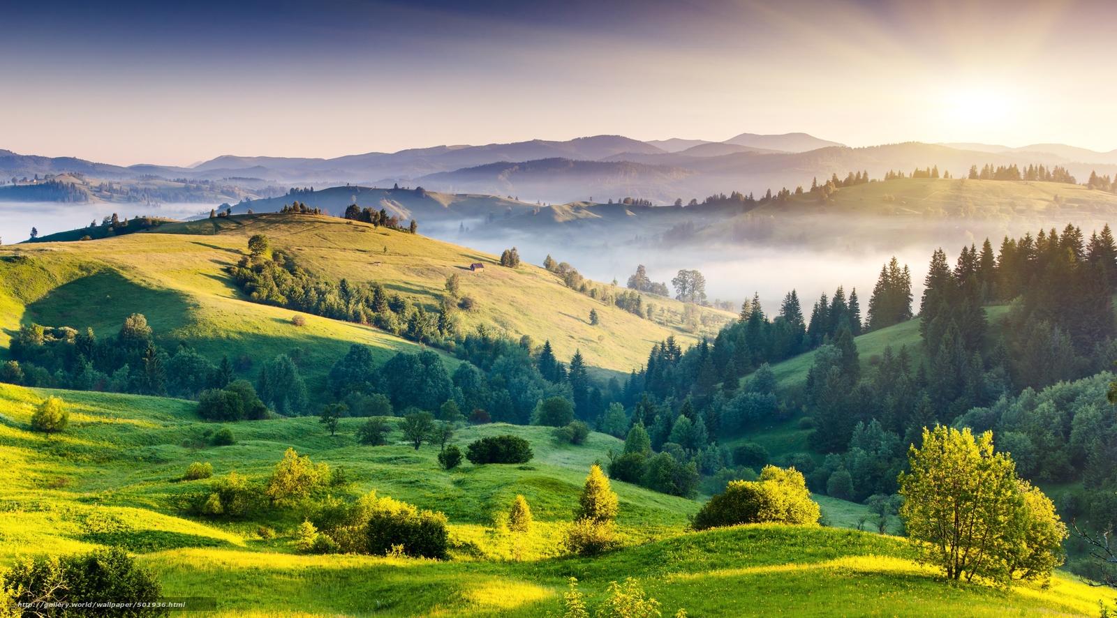 Скачать обои пейзаж,  природа,  холмы,  деревья бесплатно для рабочего стола в разрешении 5576x3087 — картинка №501936