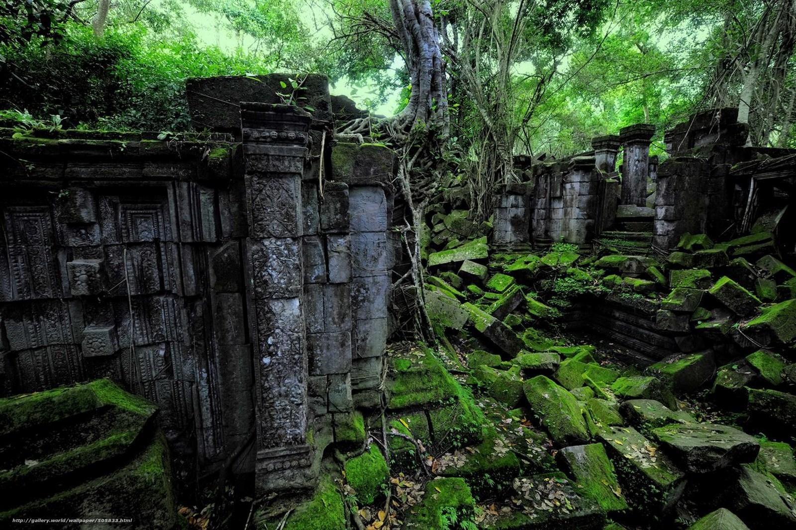 Скачать обои руины,  лес,  пейзаж бесплатно для рабочего стола в разрешении 2560x1706 — картинка №505833