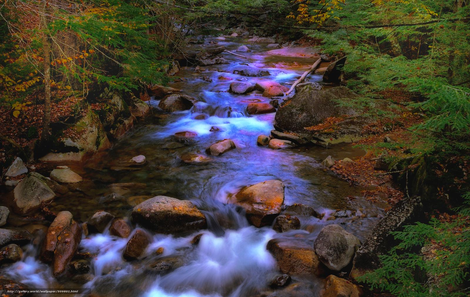 Скачать обои река,  лес,  камни,  пейзаж бесплатно для рабочего стола в разрешении 1900x1200 — картинка №509801