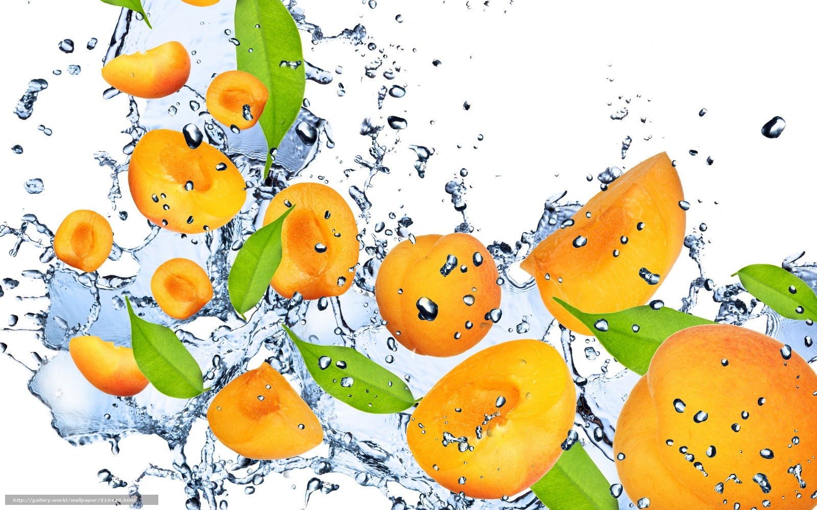 scaricare gli sfondi albicocca,  arancione,  acqua,  gocce Sfondi gratis per la risoluzione del desktop 2560x1600 — immagine №510420