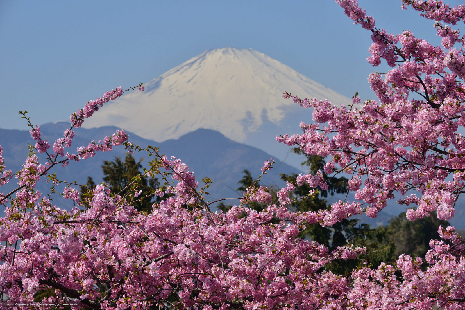 Скачать обои mount fuji,  japan,  Фудзияма,  гора бесплатно для рабочего стола в разрешении 2048x1367 — картинка №512440
