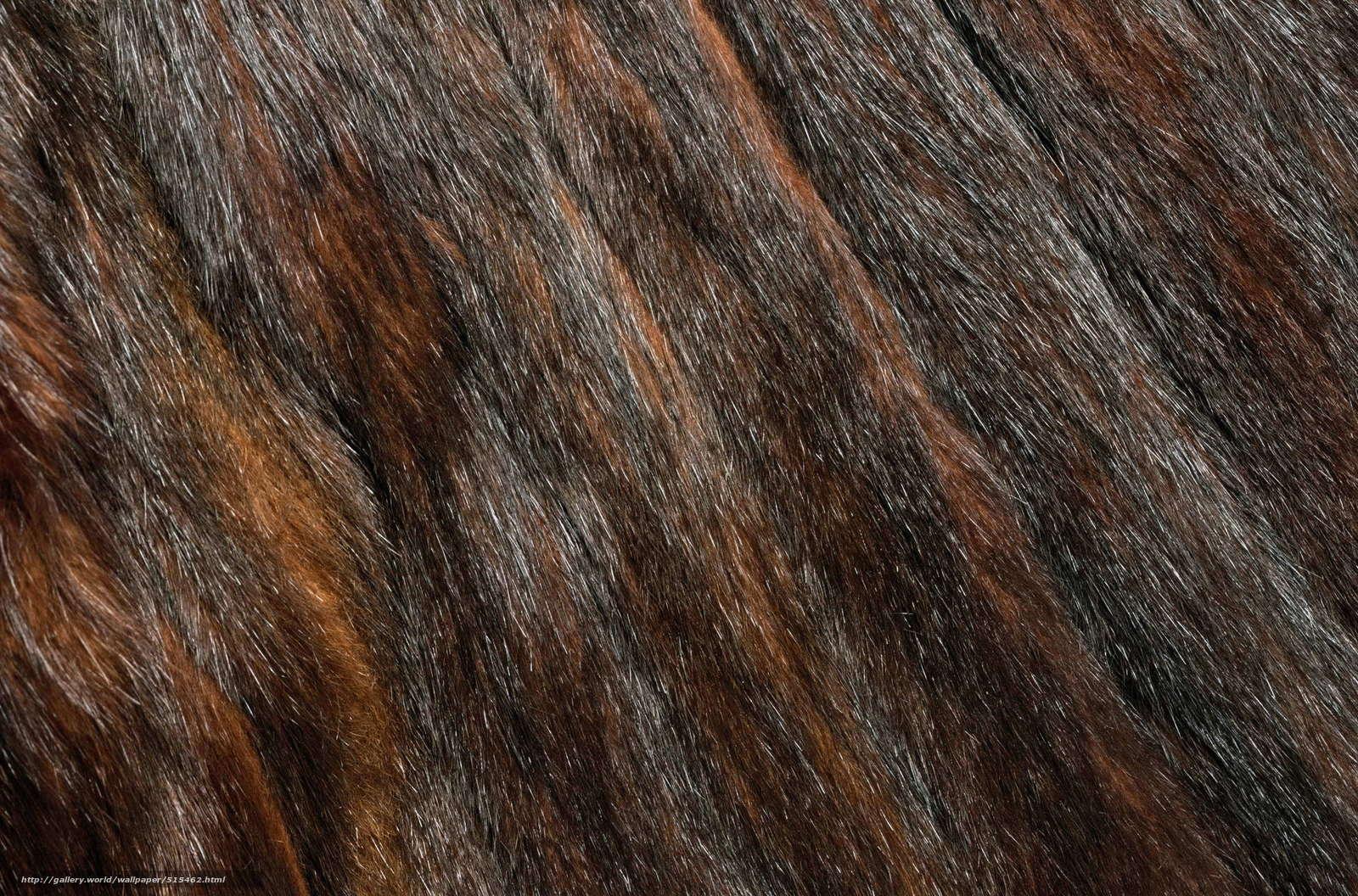 Текстура ковра