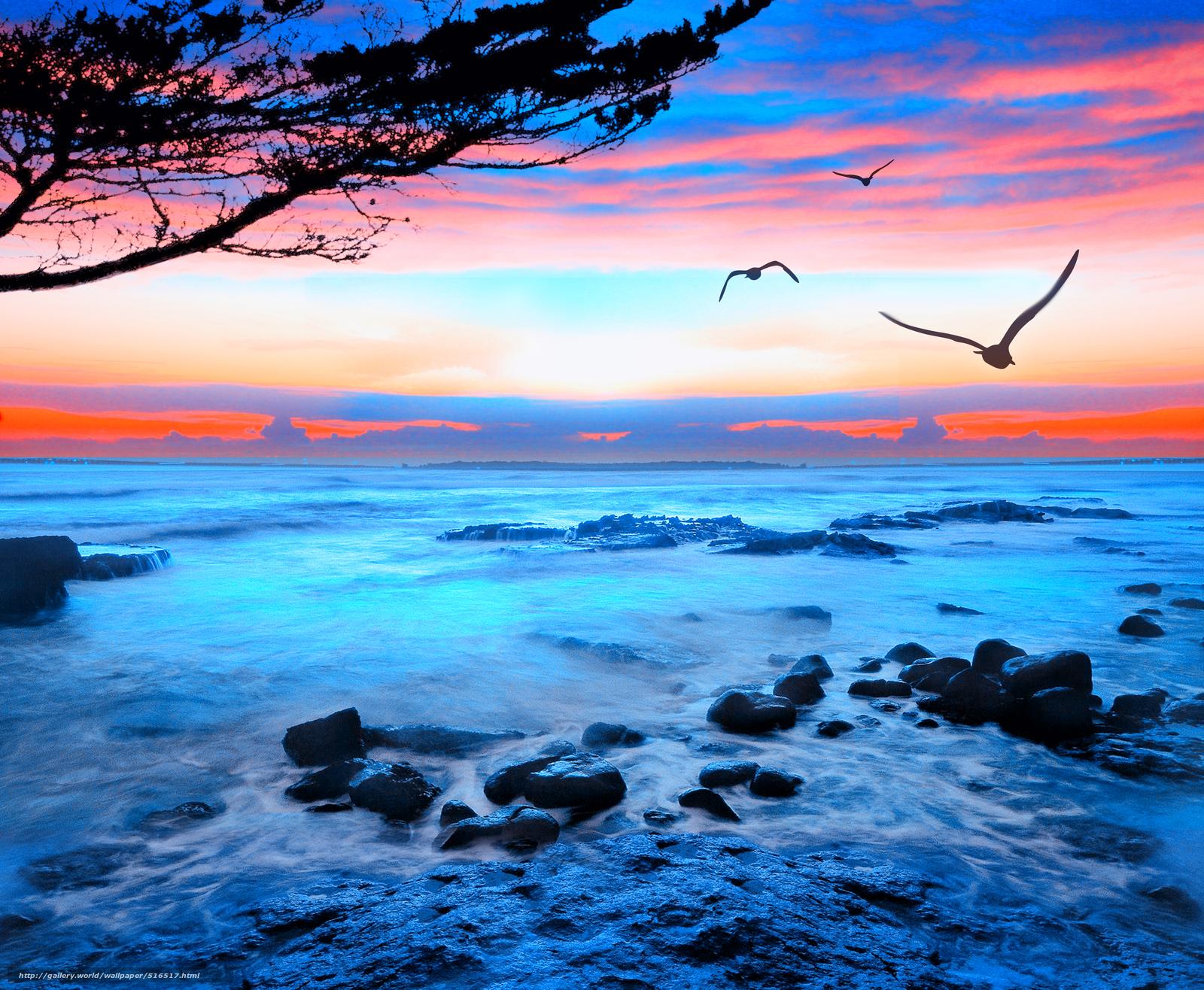 Scaricare gli sfondi tramonto mare gabbiani paesaggio for Foto mare per desktop