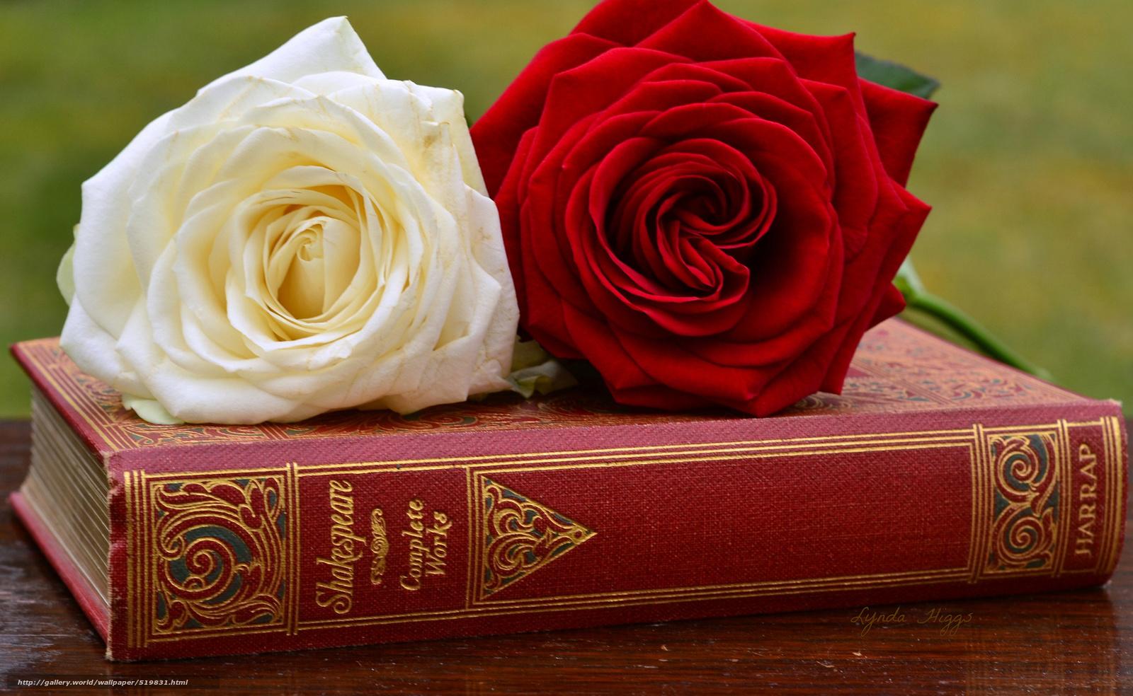 Книги про розы скачать бесплатно