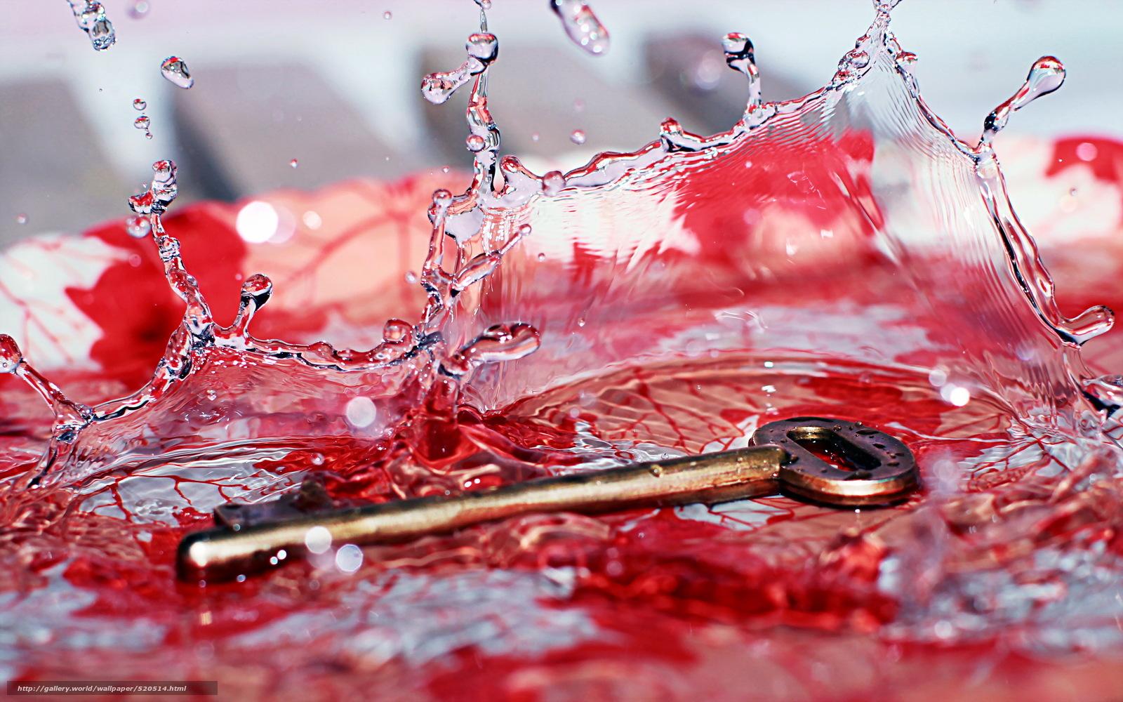 scaricare gli sfondi chiave,  Macro,  acqua Sfondi gratis per la risoluzione del desktop 2560x1600 — immagine №520514