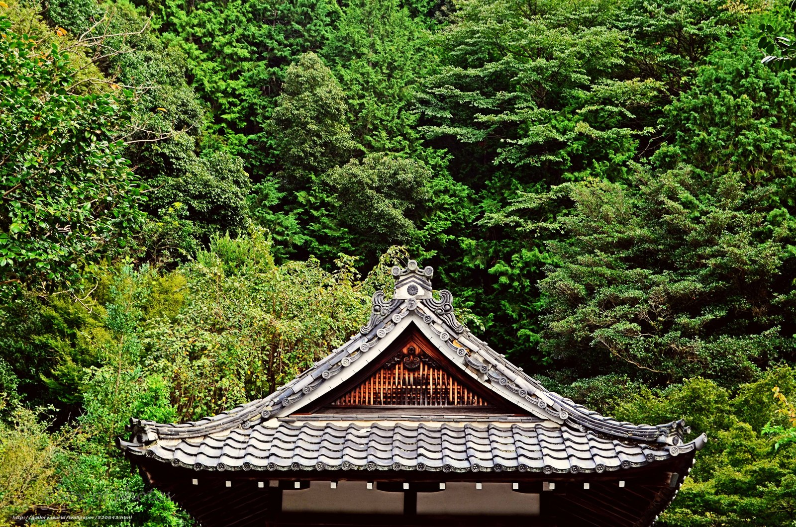 Download wallpaper roof,  Trees,  Garden,  greens free desktop wallpaper in the resolution 4928x3264 — picture №520643