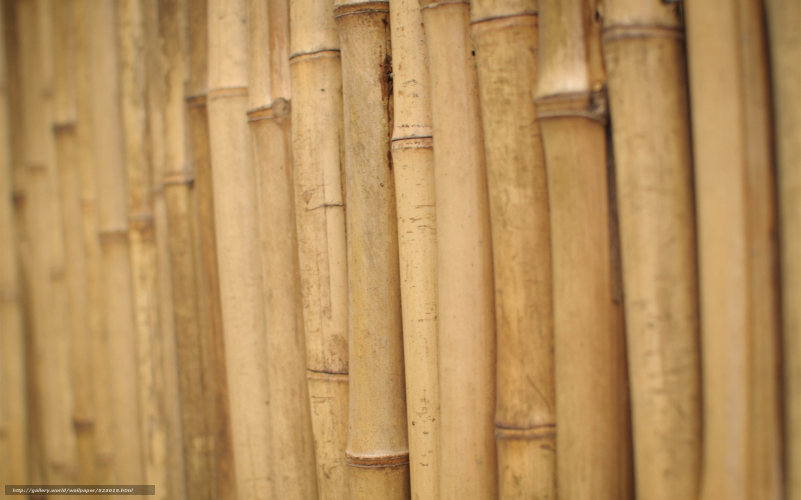Tlcharger fond d 39 ecran morceau de bois dcoule bambou - Wallpaper holz ...
