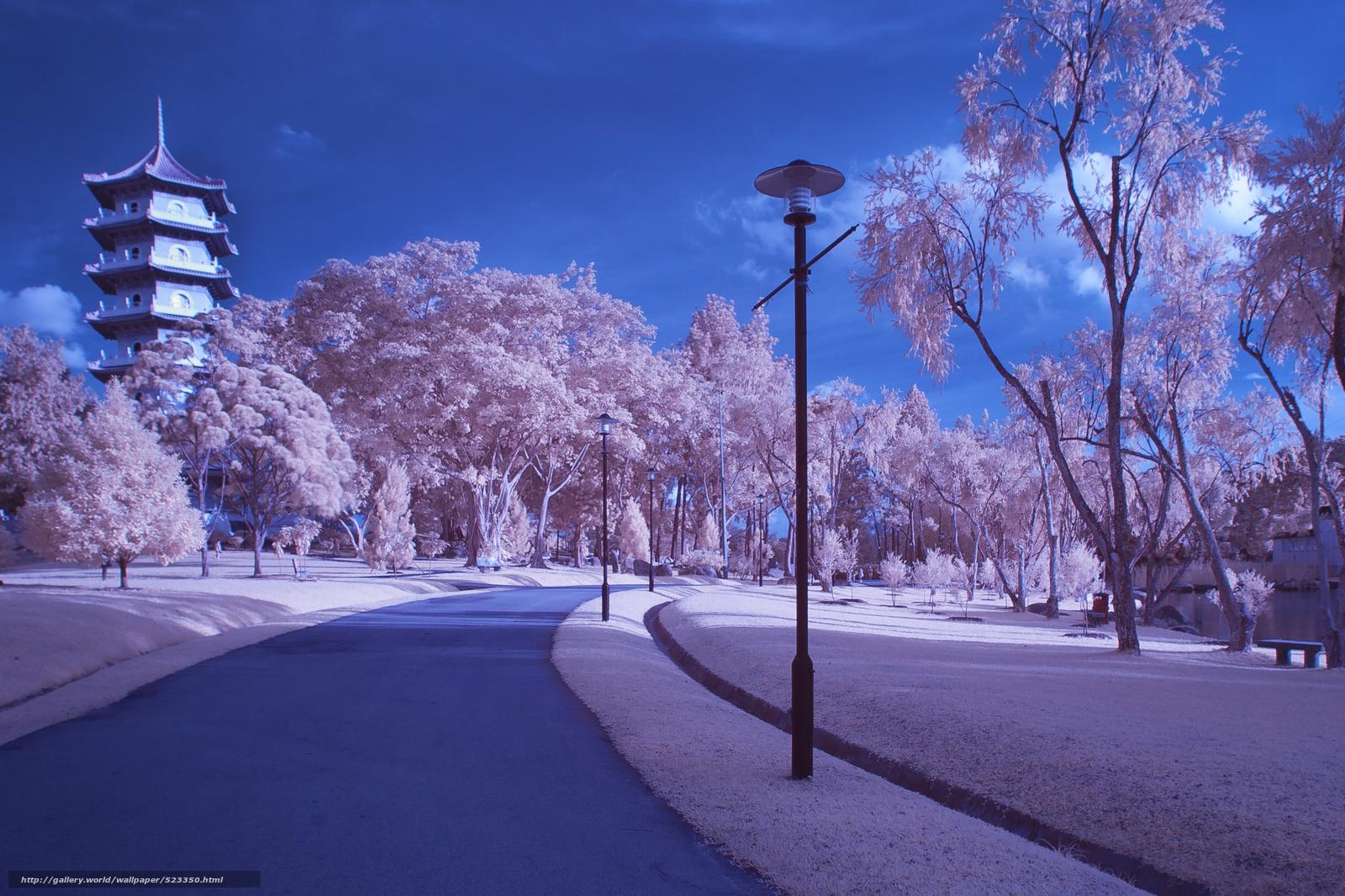 Tlcharger fond d 39 ecran japon sakura printemps ptales for Immagini desktop primavera