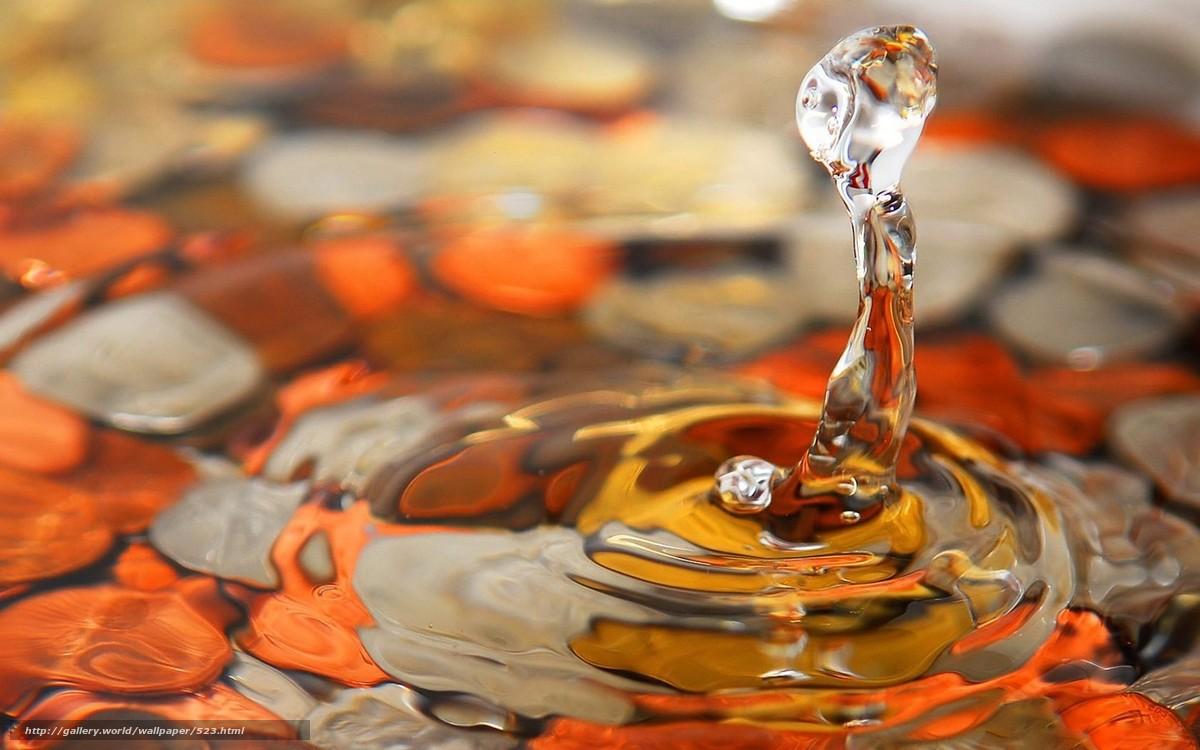 Скачать обои капля,  вода,  макросьемка бесплатно для рабочего стола в разрешении 1680x1050 — картинка №523