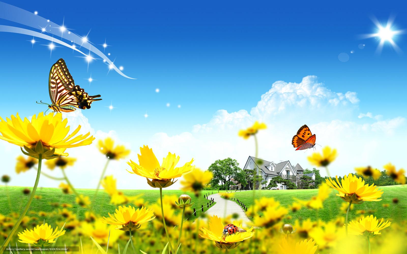 Scaricare gli sfondi farfalle fiori 3d sfondi gratis per for Sfondi farfalle gratis