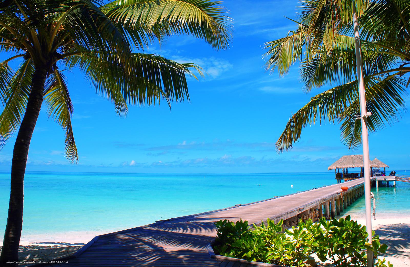 tlcharger fond d 39 ecran maldives plage palmiers fonds d 39 ecran gratuits pour votre rsolution du. Black Bedroom Furniture Sets. Home Design Ideas