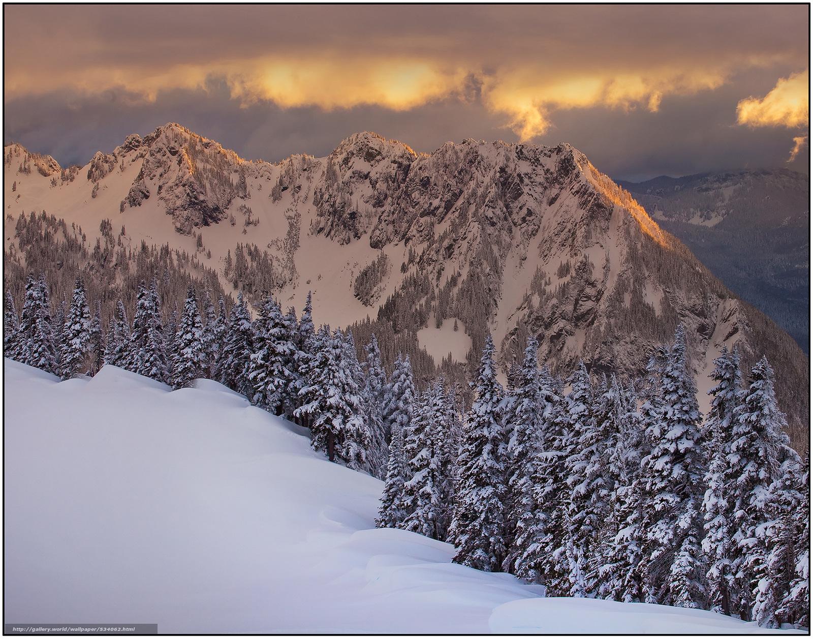Скачать обои spotlight peaks on cascade range,  mount rainier national park,  wa бесплатно для рабочего стола в разрешении 3000x2357 — картинка №534062