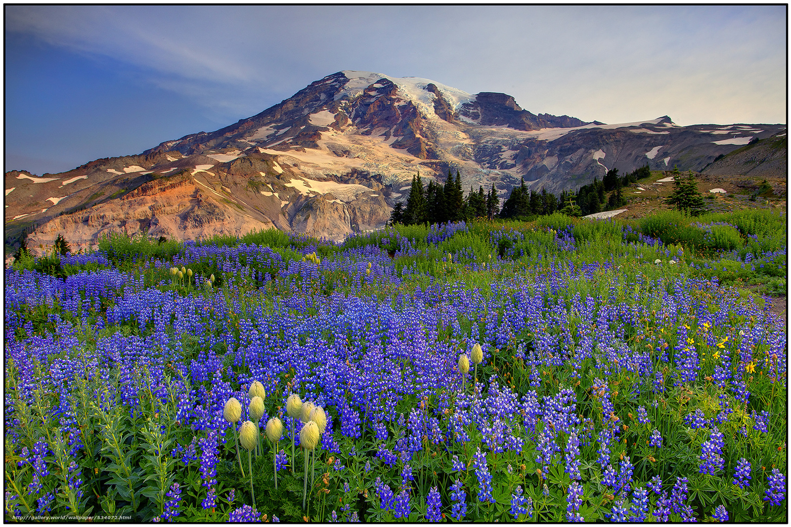 Images of Download Hintergrund Mount Rainier - #SC