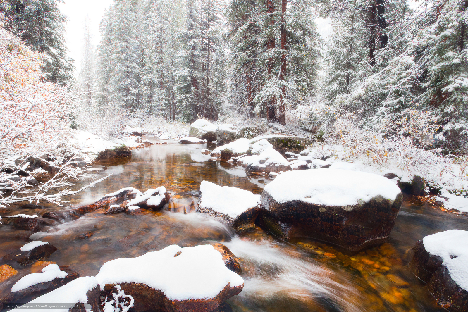 Download wallpaper winter has arrived for this creek - independence pass,  aspen,  colorado free desktop wallpaper in the resolution 3000x2000 — picture №534250