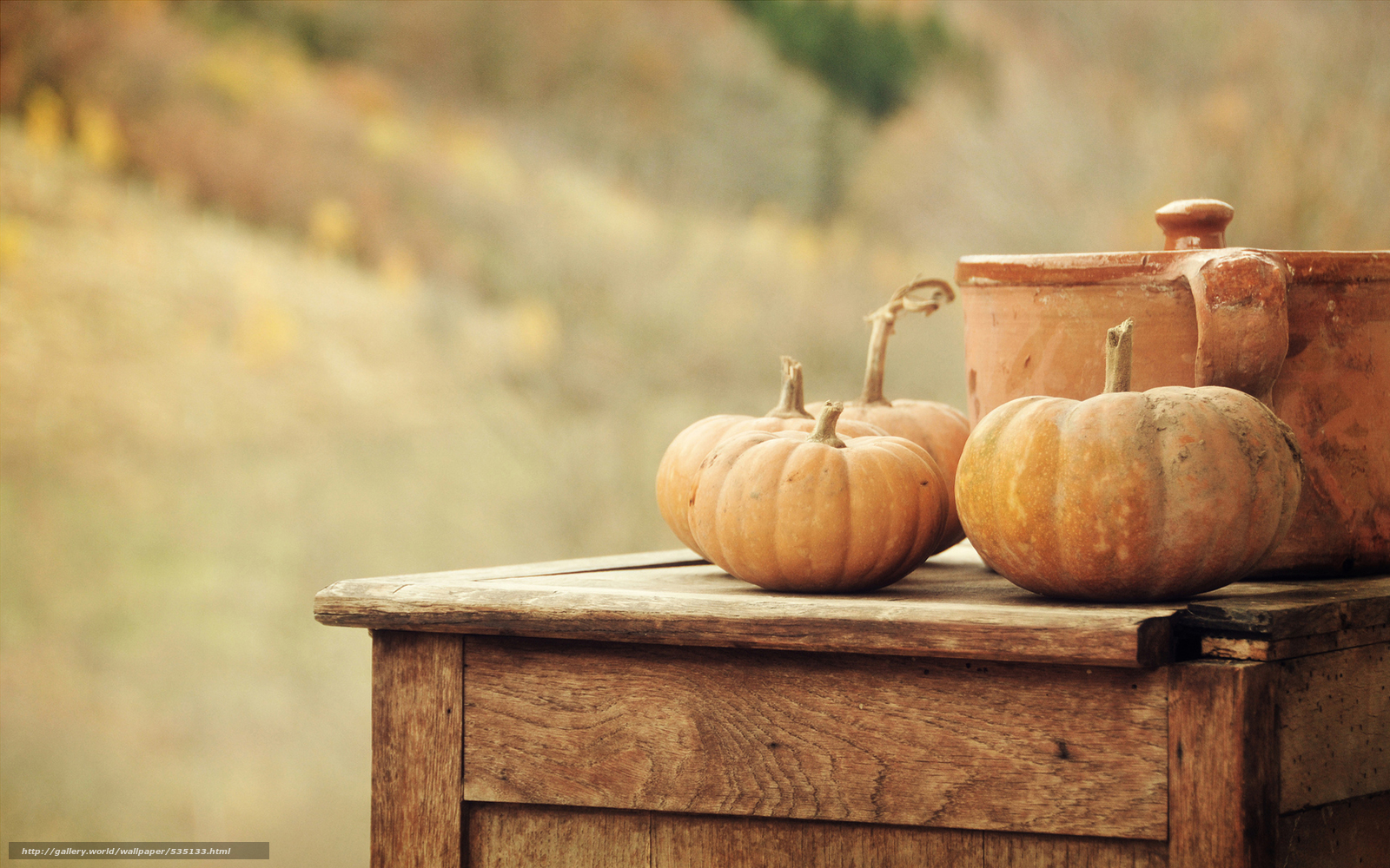 Download wallpaper pan,  harvest,  vegetables,  nature free desktop wallpaper in the resolution 1920x1200 — picture №535133