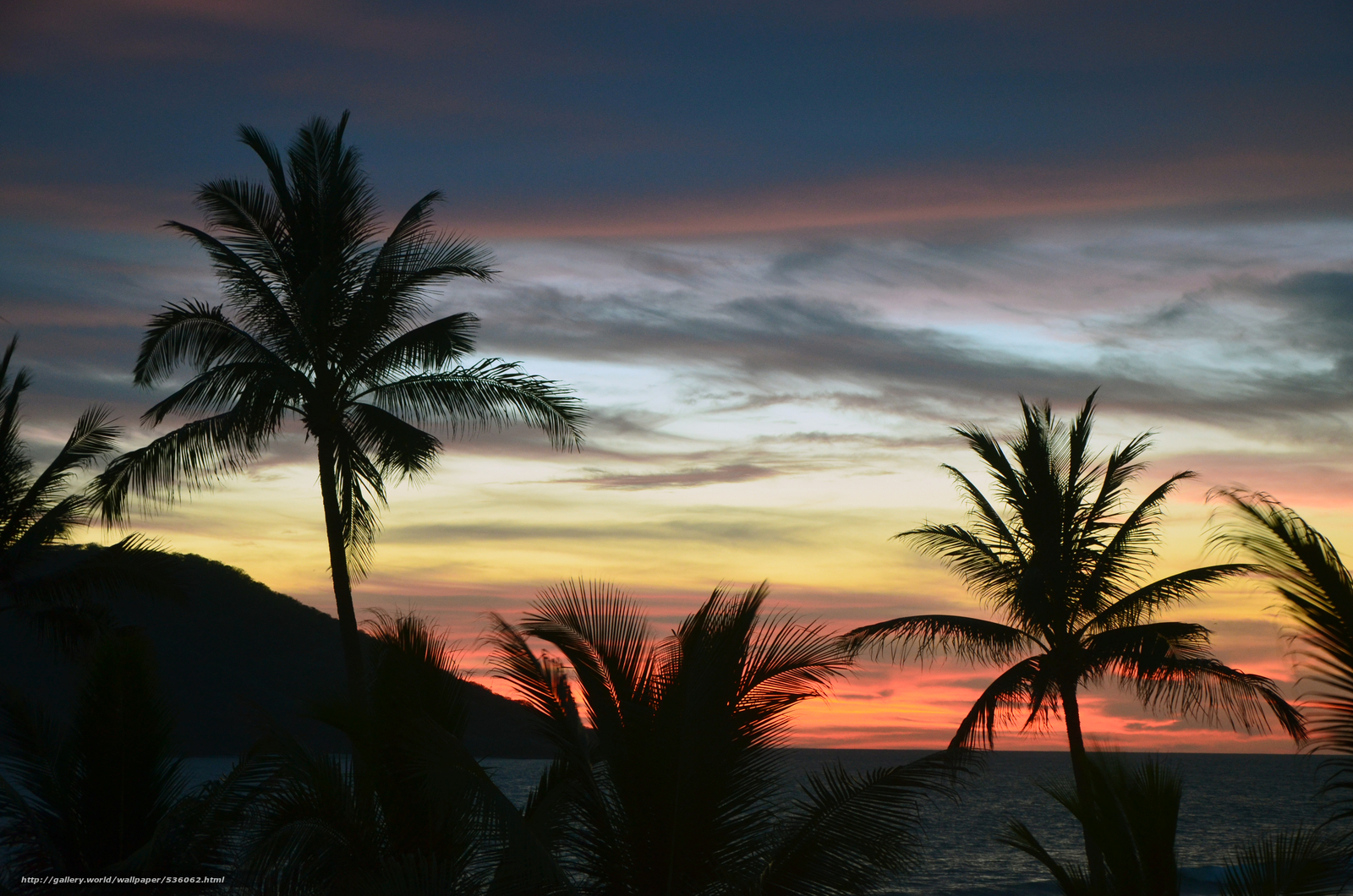 Download wallpaper sunset,  Palms,  landscape free desktop wallpaper in the resolution 4928x3264 — picture №536062