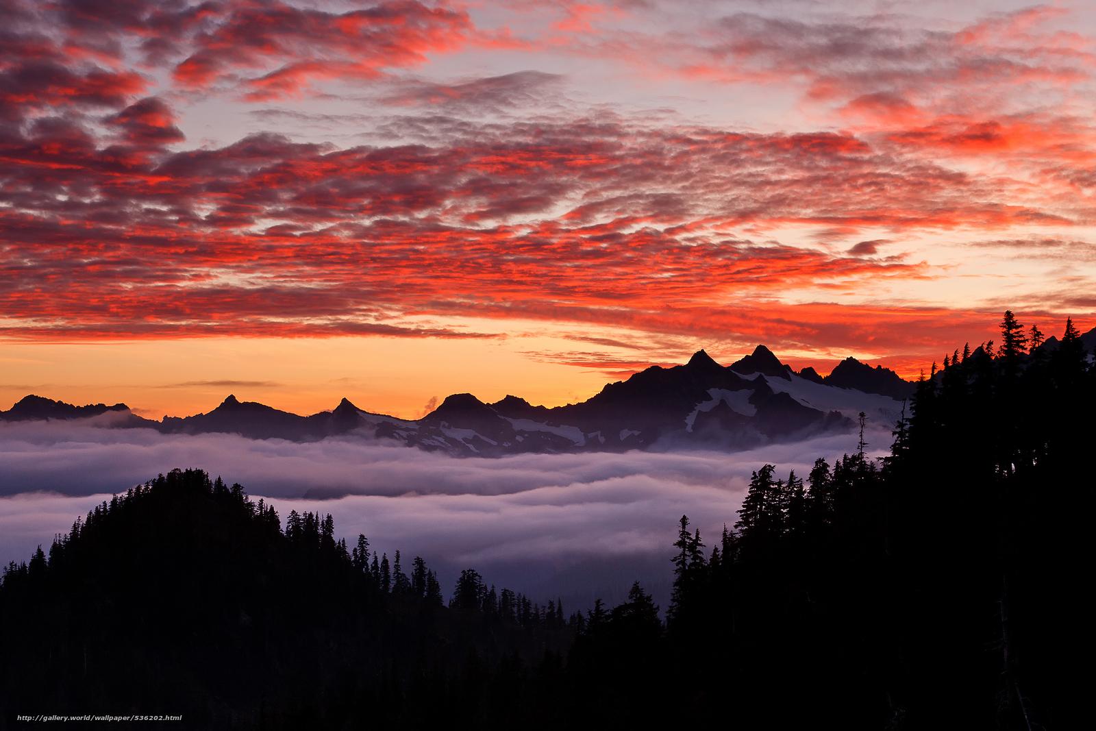 Скачать обои закт,  Орегон,  США,  лес бесплатно для рабочего стола в разрешении 2048x1366 — картинка №536202