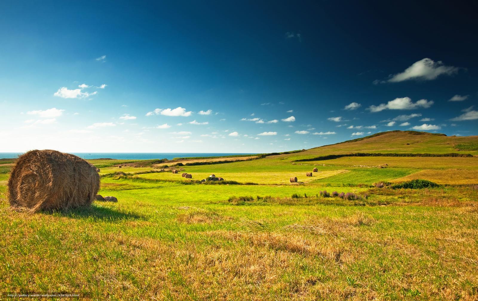 Скачать обои солома,  поле,  побережье бесплатно для рабочего стола в разрешении 8220x5178 — картинка №536355