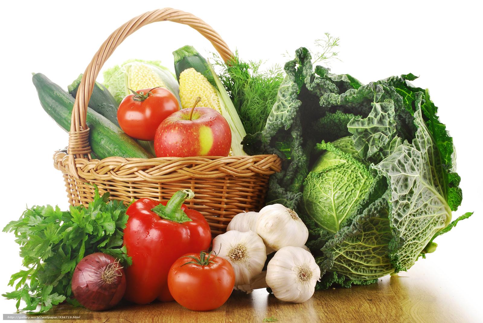 Download wallpaper harvest,  fruit,  vegetables free desktop wallpaper in the resolution 7744x5184 — picture №536719