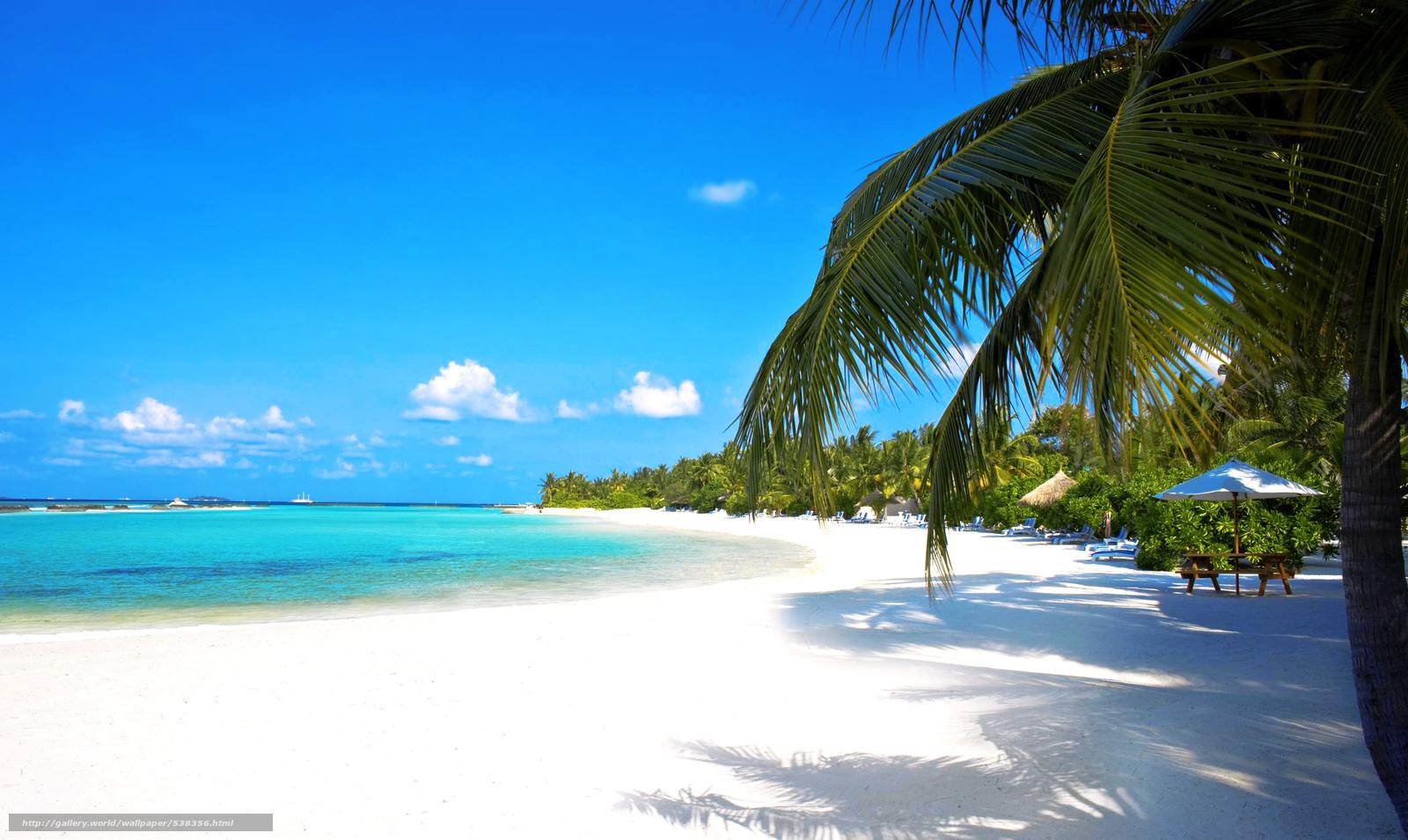 Tlcharger fond d 39 ecran tropiques mer plage fonds d 39 ecran for Fond ecran gratuit mer