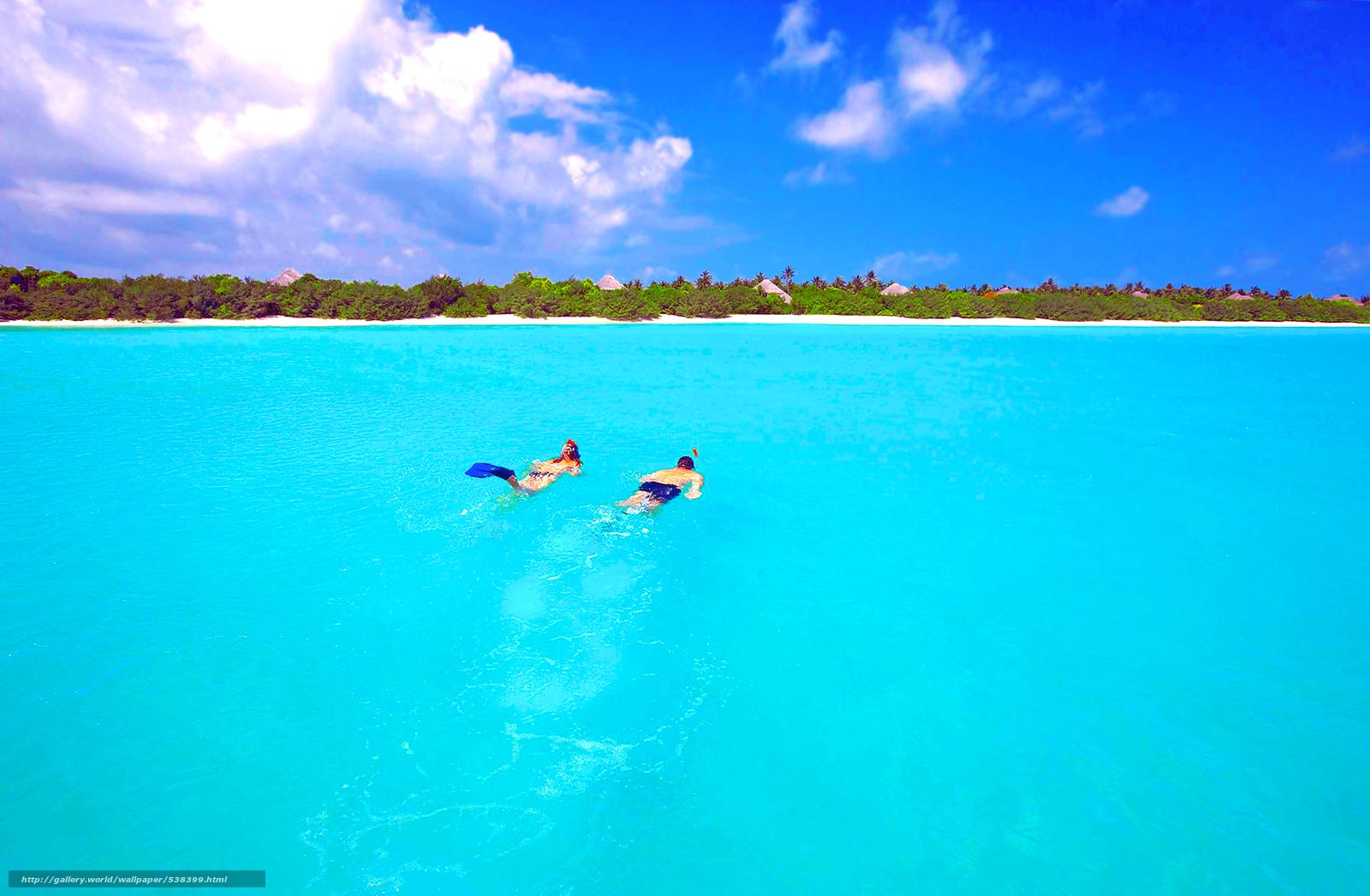 scaricare gli sfondi tropici,  Maldive,  mare,  immersioni Sfondi gratis per la risoluzione del desktop 2464x1612 — immagine №538399