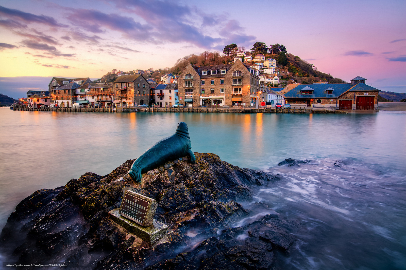 Download wallpaper Nelson the Seal,  Looe,  Cornwall,  england free desktop wallpaper in the resolution 2048x1364 — picture №540542
