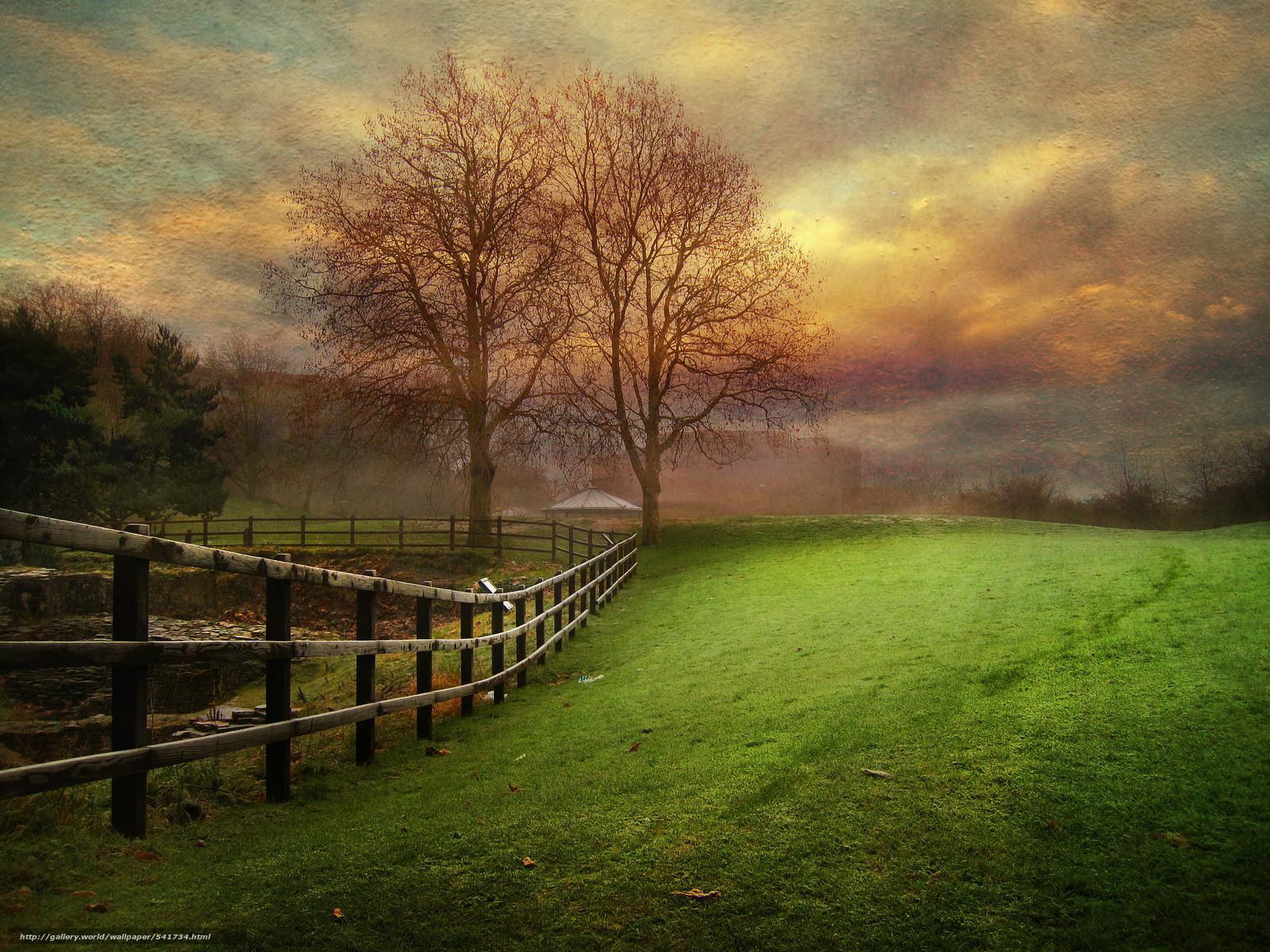 scaricare gli sfondi Parkland,  tramonto,  alberi,  campo Sfondi gratis per la risoluzione del desktop 2048x1536 — immagine №541734