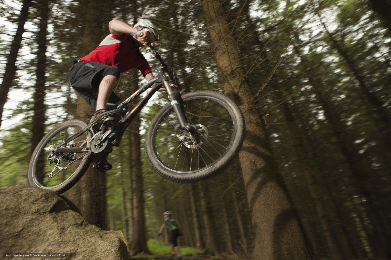 Descargar gratis bicicleta,  bicicleta,  bosque,  montaña Fondos de escritorio en la resolucin 2716x1810 — imagen №542351