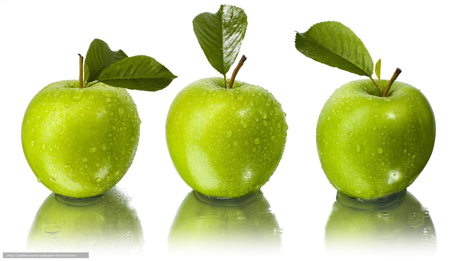 Download Hintergrund Apfel, gru00fcn, papper, Blatt Freie ...