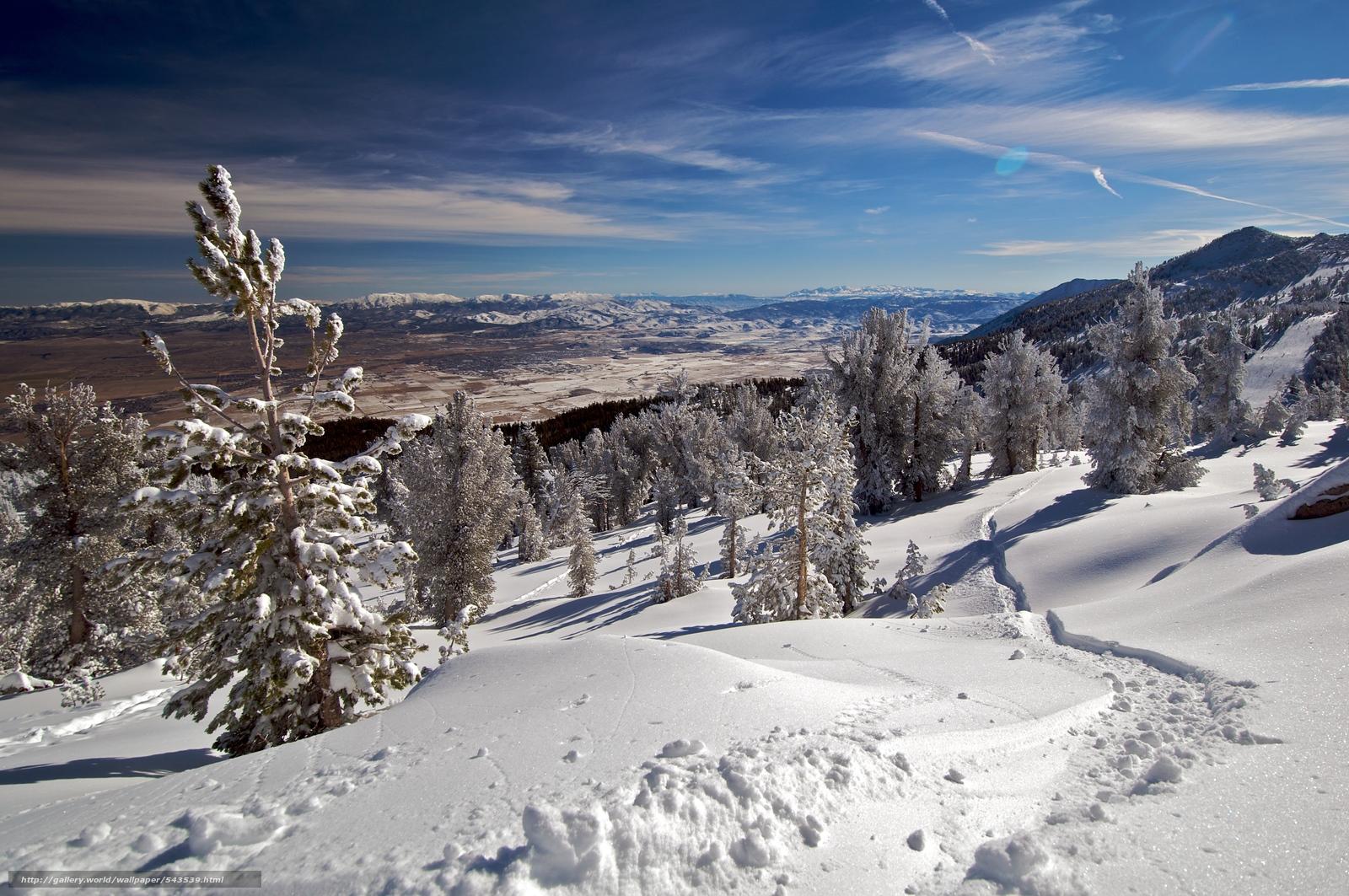 下载壁纸 冬天,  雪,  山,  树 免费为您的桌面分辨率的壁纸 4288x2848 — 图片 №543539