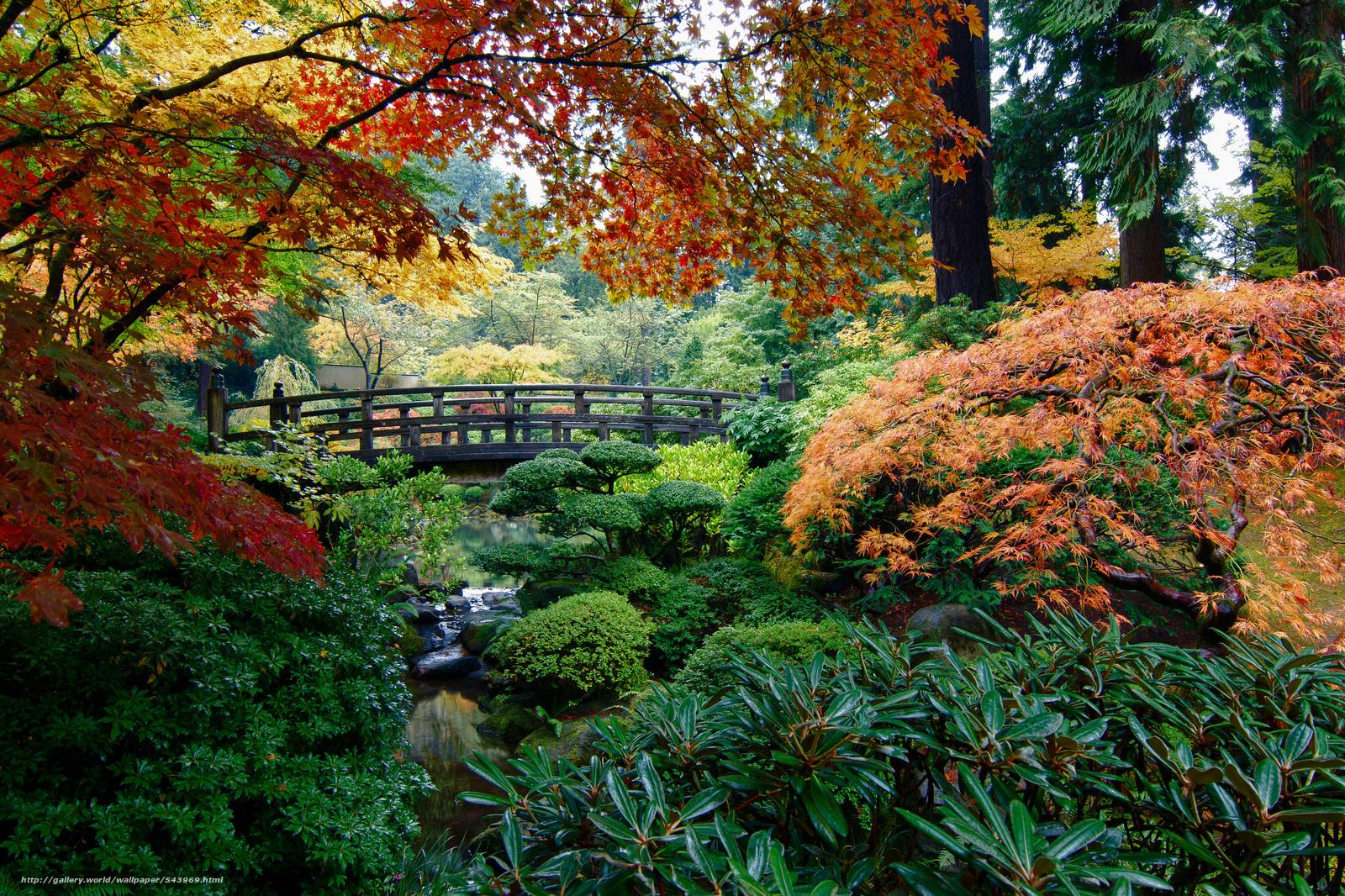 Tlcharger fond d 39 ecran jardin japonais portland arbres for Jardin japonais fond d ecran