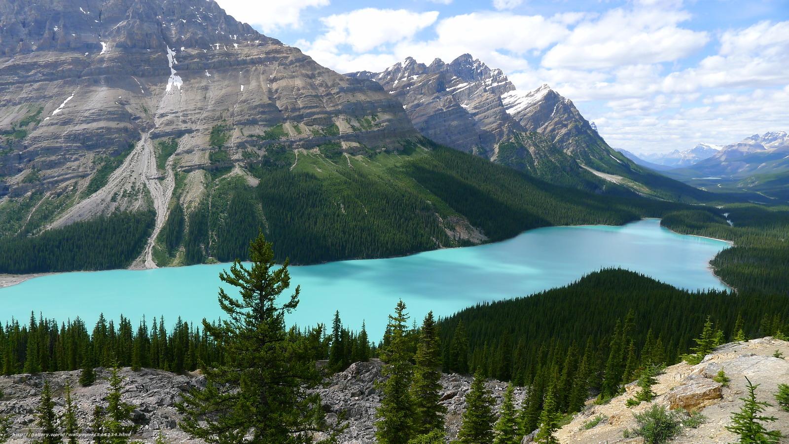 Скачать обои Peyto Lake,  Alberta,  Canada бесплатно для рабочего стола в разрешении 3968x2232 — картинка №544234