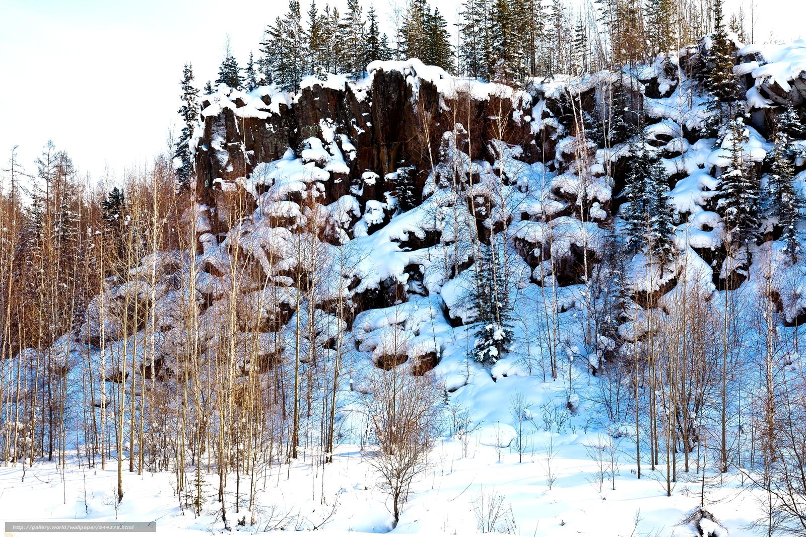 scaricare gli sfondi inverno,  nevicata,  alberi,  paesaggio Sfondi gratis per la risoluzione del desktop 4368x2912 — immagine №544378