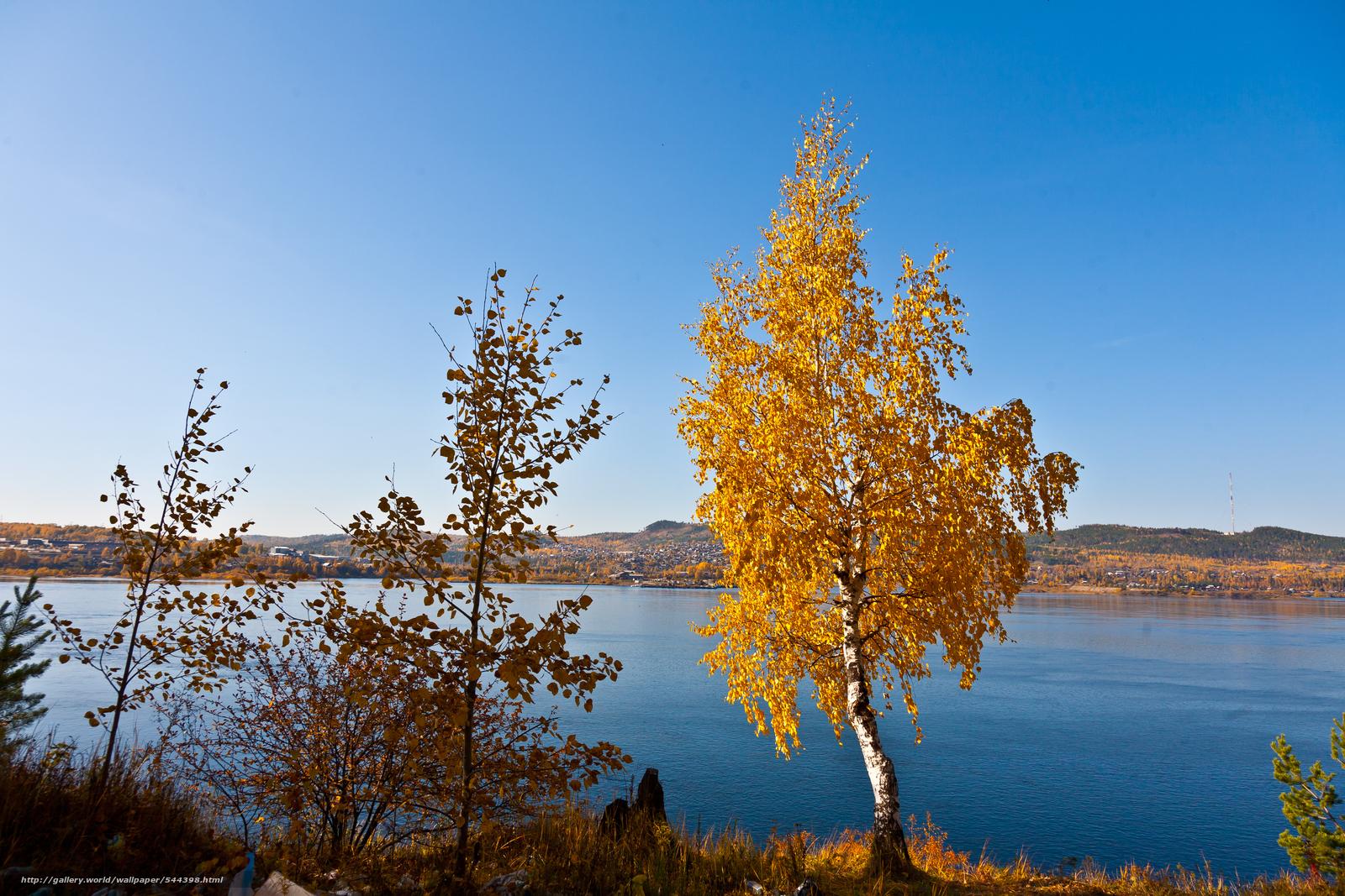 scaricare gli sfondi fiume,  alberi,  autunno,  paesaggio Sfondi gratis per la risoluzione del desktop 4368x2912 — immagine №544398