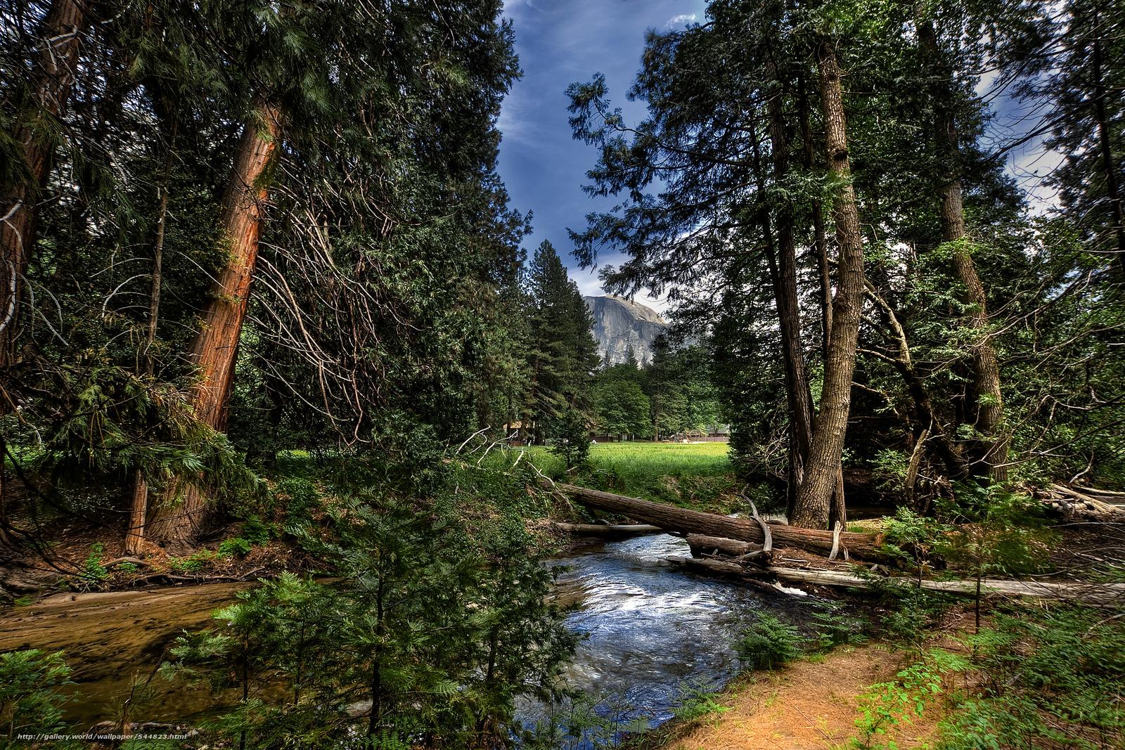 Download wallpaper Yosemite National Park,  forest,  river,  landscape free desktop wallpaper in the resolution 7500x5000 — picture №544823