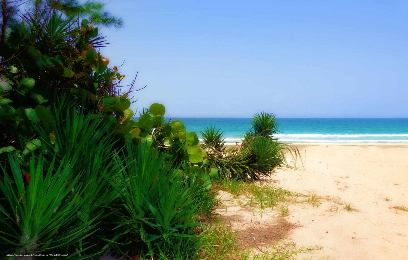下载壁纸 佛罗里达,  大西洋,  景观 免费为您的桌面分辨率的壁纸 4348x2770 — 图片 №544893